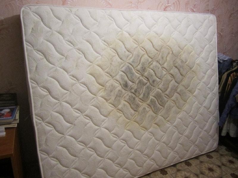 Чем почистить детский матрас в домашних условиях 355