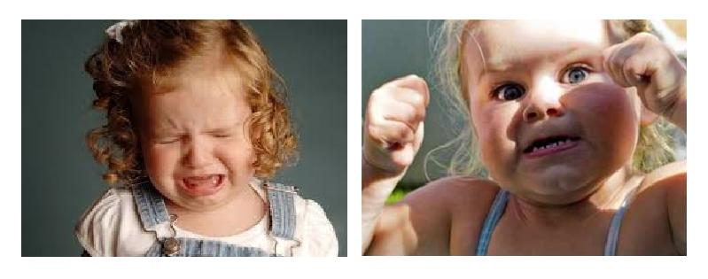 как бороться с упрямством ребенка 5 лет