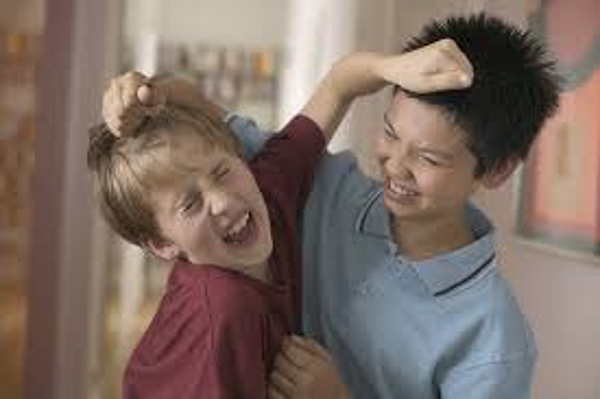 Соперничество детей в семье