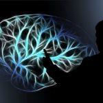6 способов как эффективно развить интеллект