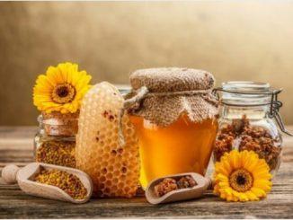 как проверить качество меда при покупке