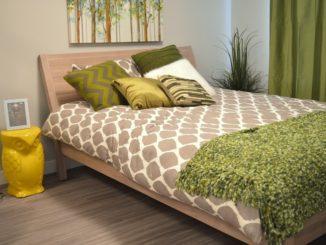 Растения для спальни благоприятные и нет